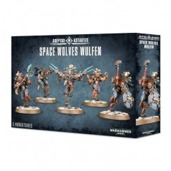 SPACE WOLVES WULFEN Warhammer 40k ADEPTUS ASTARTES 5 miniature GAMES WORKSHOP età 12+