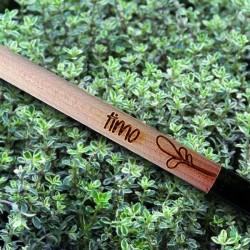 Sprout MATITA in legno CHE SI PIANTA capsula CON SEME per far crescere una pianta di TIMO