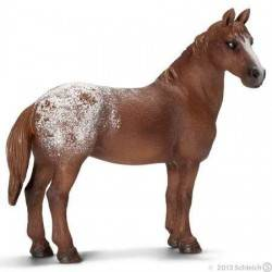 Appaloosa Mare-13731 Schleich horses