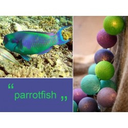 LUCI HAPPY LIGHTS PARROTFISH fila 20 palline colorate in corda con lampadine spina